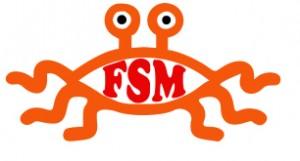 FSM1-300x161